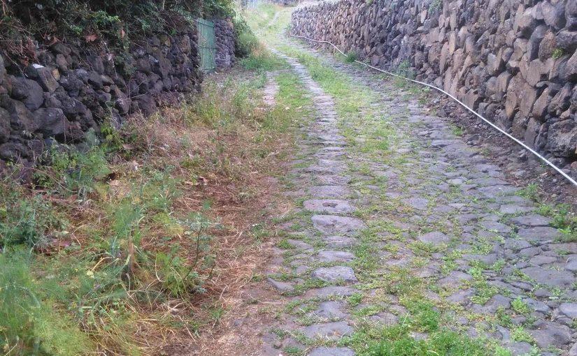 Proponemos medidas para restaurar y poner en valor los caminos tradicionales