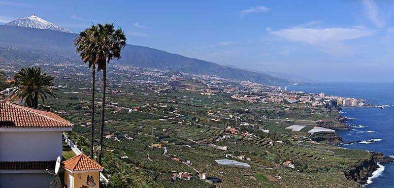 Asamblea apuesta por el impulso y desarrollo por parte del ayuntamiento del sector agrario en La Orotava