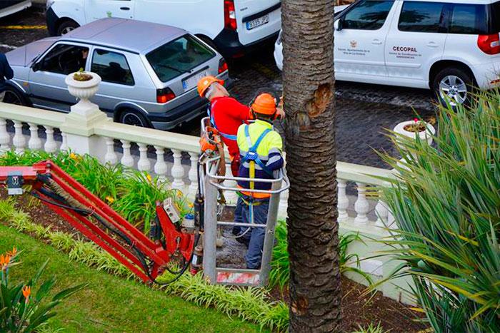 PRENSA: La Asamblea lamenta la prorroga del contrato de mantenimiento de jardines